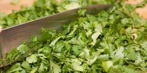 Menus4Moms: How to freeze cilantro